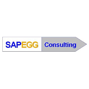 SAPEGG Consulting GmbH